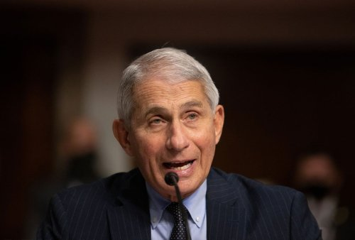 The search for the Dr. Fauci of climate change