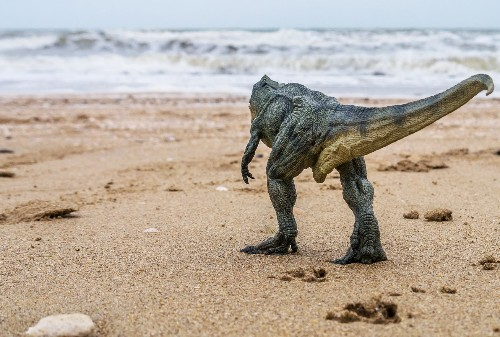 Thanks to a new fossil discovery, we suddenly know a lot more about dinosaur sex