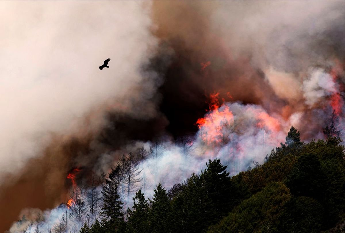 """Wildfires, coronavirus collide in California to create a """"perfect storm"""""""