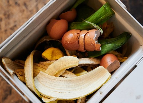 Thinking about composting? This is your ultimate guide