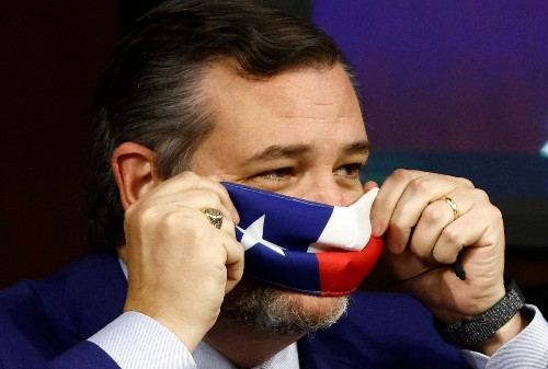 "Texas Democrats demand Ted Cruz's expulsion from Senate: ""His conduct was seditious"""