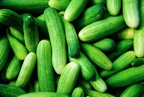 The right way to store cucumbers (so they don't turn to mush)