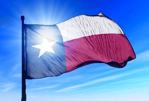 Liberal Texan cover image