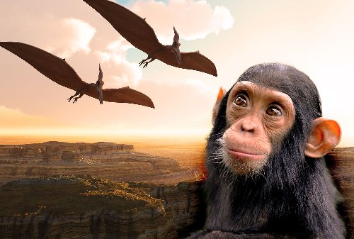 """Pterosaurs with thumbs? Scientists say yes, a """"monkeydactyl"""" once existed"""
