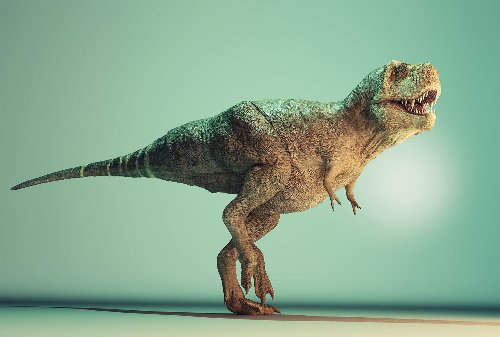 Here's how scientists calculated how many T. Rexes lived on Earth