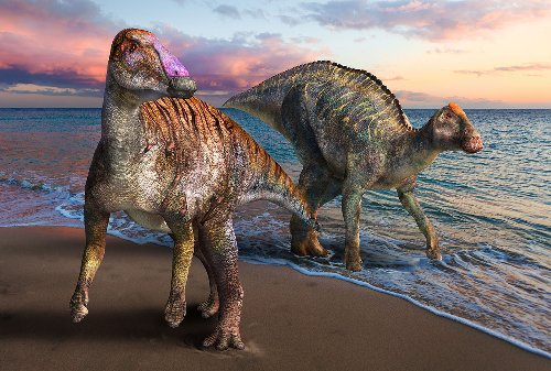 """Meet the """"caribou of the Cretaceous"""": How ancient hadrosaurs spread across Earth"""