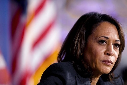 Sympathy for the K-Hive: Kamala Harris ran a bad campaign — and faced remarkable online spite