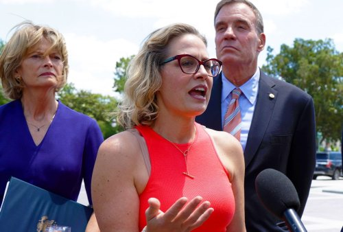 """""""Utter betrayal"""": Activists who helped elect Kyrsten Sinema say she """"turned her back on us"""""""
