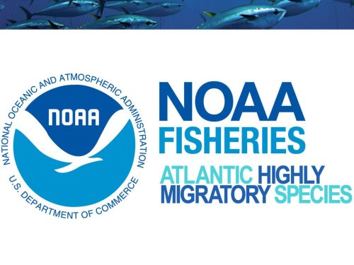 Final Rule to Implement Federal Atlantic Tunas Regulations in Maine State Waters