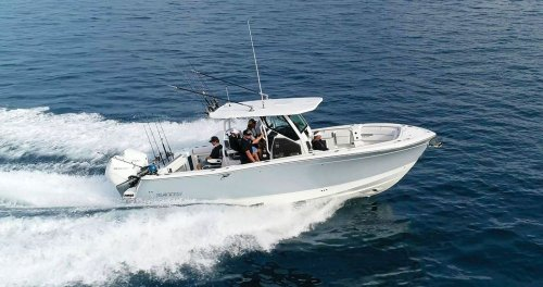 Blackfin 302 CC Fishability Test