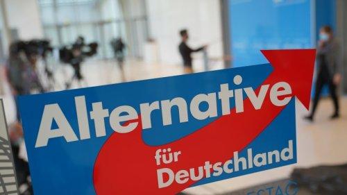 AfD-Wahlprogramm zur Bundestagswahl: Zentrale Punkte in der Kurzfassung