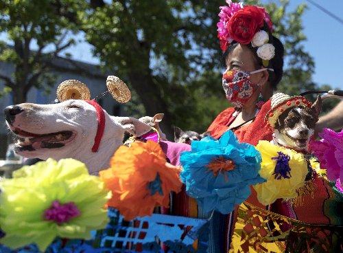Commission: Fiesta will be held at 100% capacity | San Antonio Report