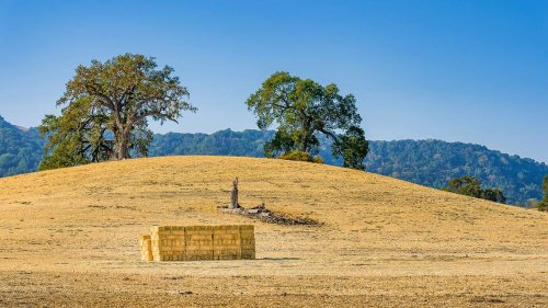 Paso Robles named one of the best small towns to retire to in America, magazine says