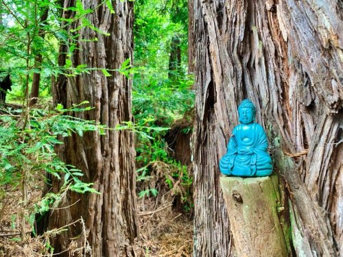 Land of Medicine Buddha and the Eight Verses Trail