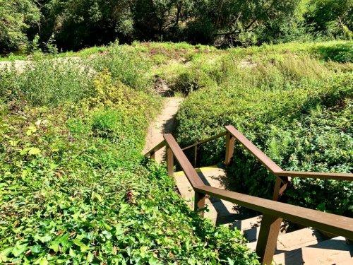 Stay at Fern River Resort – Feels like a Summer Camp