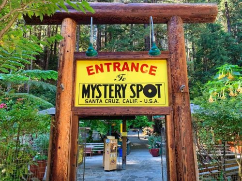 Tripping out at the Mystery Spot