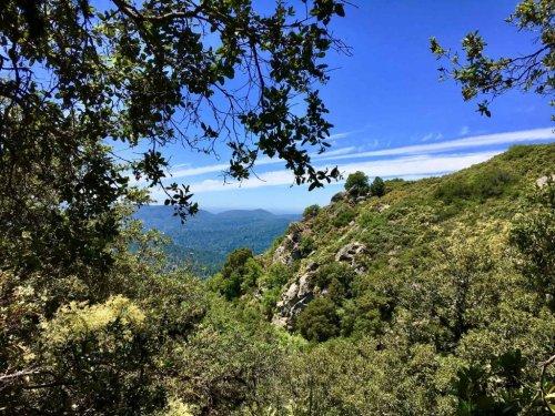 That's My Park: Friends of Santa Cruz State Parks