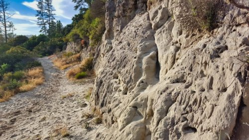 The Santa Cruz Sandhills: Windows into the Miocene