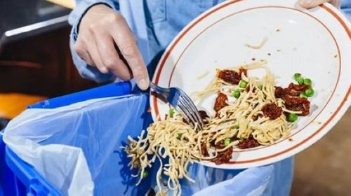 Food waste in Kingdom exceeds 4 million tons worth SR40 billion annually