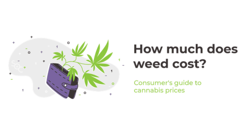 How Much Does Weed Cost? Cannabis Price Guide 2021