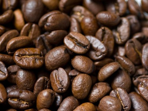 Scientists Are Working to Save Coffee Beans Across the World as Climate Change Threatens to Wipe Them Out