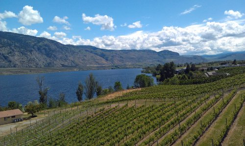 Wine Tasting in Canada's Okanagan Valley