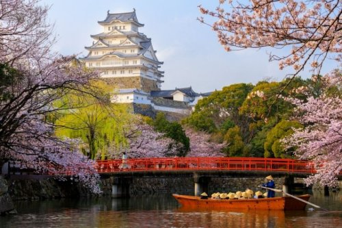 9 Great Cherry Blossom Viewing Spots in Japan