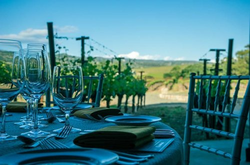 10 Great Wine Regions in the United States for a Wine Tasting Trip