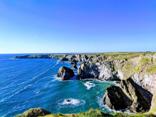 Cornwall's Fantastic Food and Where to Find It
