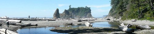 Six Reasons to Visit Olympic National Park
