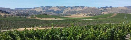 Wine Tasting in Paso Robles, California