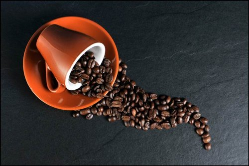Kona Coffee: Why People Pay So Much for a Bag of Beans