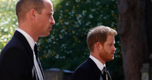 Harry & William Actually Spotted Talking In Video From Prince Philip's Funeral