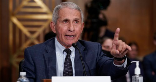 Dr. Anthony Fauci, Fresh Out Of F*cks, Slams Rand Paul