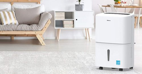 The 7 Best Basement Dehumidifiers To Help Prevent Soggy Bottom Levels