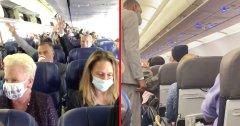 Discover flight attendant