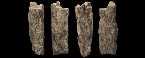 Who Are The Denisovans?