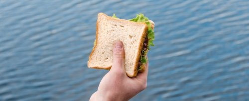 Feeling Hungry All The Time? Scientists Have a New Explanation For What's Going On