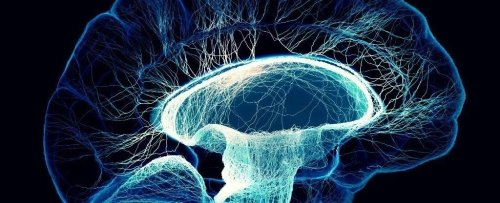 Is Consciousness Bound by Quantum Physics? We're Getting Closer to Finding Out