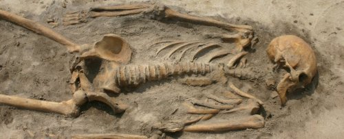Two Closely Related Vikings Died a World Apart. Now Their Bones Have Been Reunited