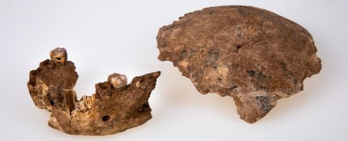 A Previously Unknown Type of Ancient Human Has Been Discovered in The Levant