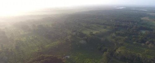 Hundreds of Ancient Maya Sites Hidden Under Mexico Reveal a Mysterious Blueprint