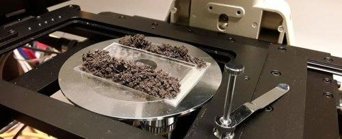 'Cyborg Soil' Unearths a Complex Web of Hidden Microbial Cities