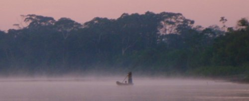 'Amazing Natural Experiment': In This Amazonian Tribe, Brains Don't Age Like Ours