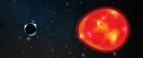 Astronomers Have Detected The Closest Black Hole to Earth. Thankfully, It's Tiny