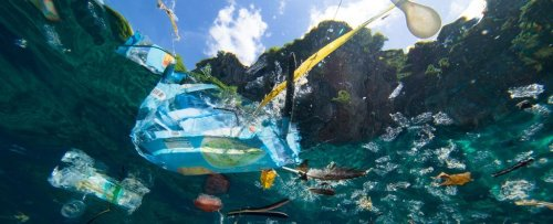 Here's What We Must Do to Stop More Plastic Polluting Our Oceans, Says New Report