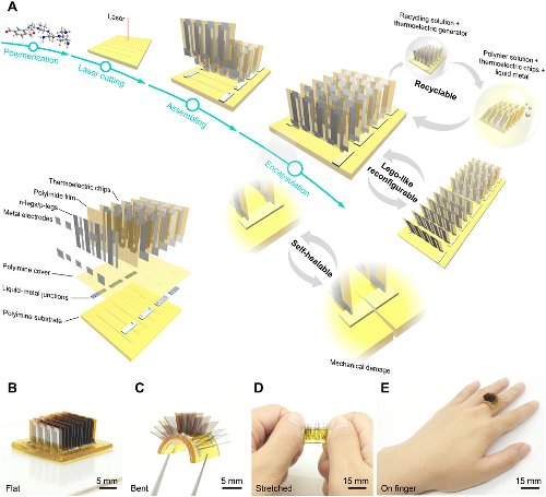 High-performance wearable thermoelectric generator with self-healing, recycling, and Lego-like reconfiguring capabilities