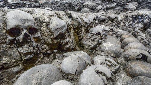 Feeding the gods: Hundreds of skulls reveal massive scale of human sacrifice in Aztec capital