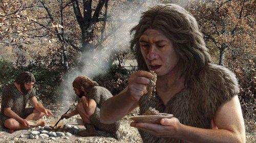 Neanderthals carb loaded, helping grow their big brains
