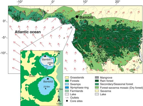 A 90,000-year record of Afromontane forest responses to climate change